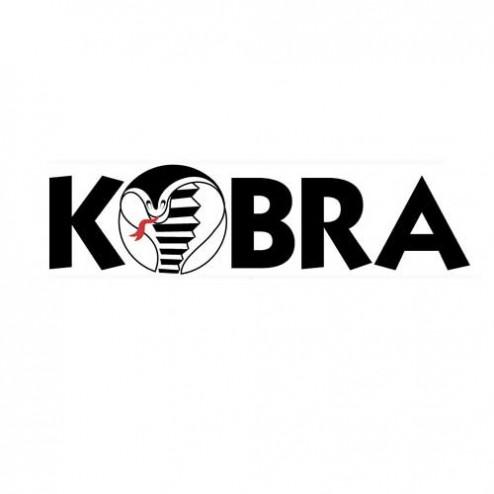Kobra CS-00X CYCLONE SCREEN LEVEL 2-4